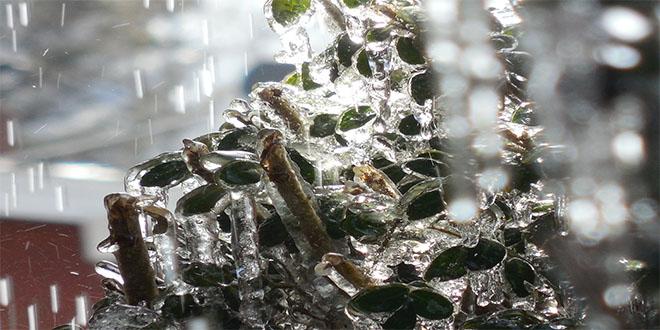 Ledena kiša