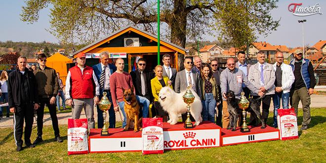 10. Međunarodna izložba pasa svih rasa u Zaječaru