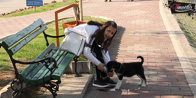 Devojčica sedi na klupi i daje vodu iz flašice svom psu