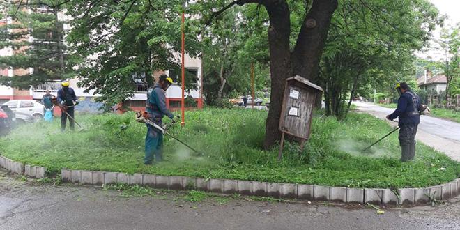 Košenje trave u zaječarskim naseljima