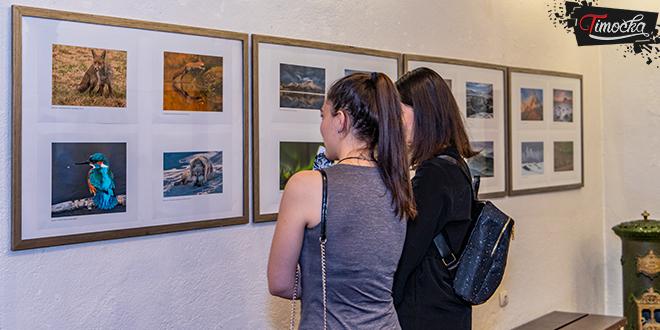"""14. okružna izložba """"Ekološka istina"""" u Zaječaru"""