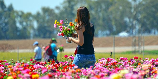 Devojka bere cveće u parku