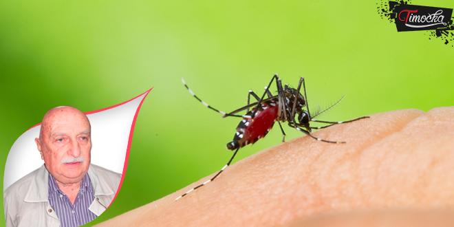 Dok život teče, zdravlje je najpreče — O komarcima i zdravlju
