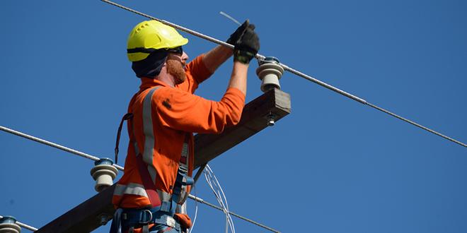 Električar na banderi