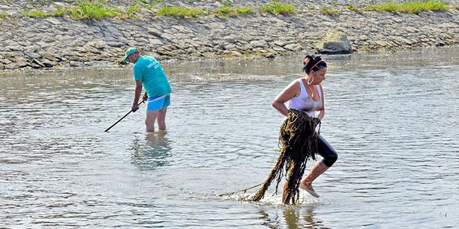 Акција чишћења дела корита реке Црног Тимока