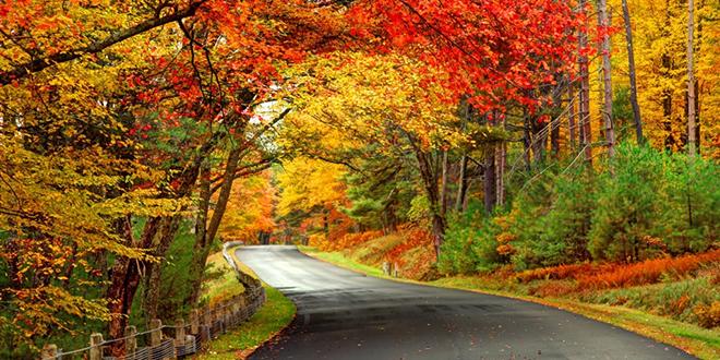 Јесењи природни пејзаж