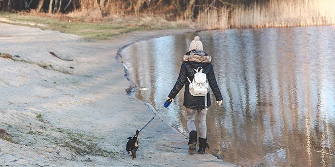 Девојка шета са својим псом поред језера