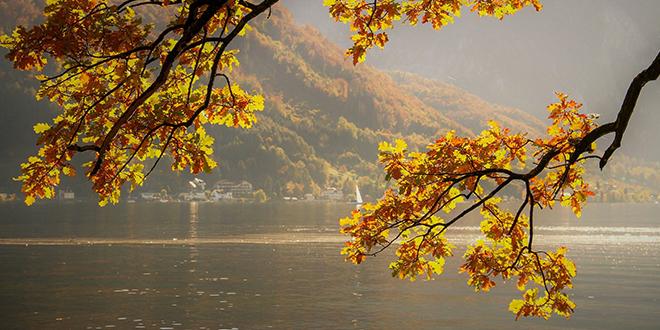 Јесен, језеро, лишће