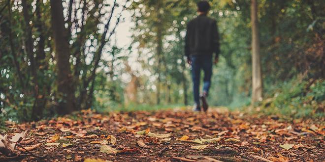 Jesen, muškarac šeta šumskom stazom
