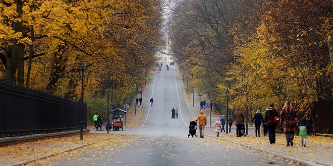 Jesen, ulica