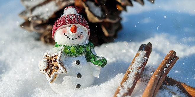Sneg, Sneško Belić