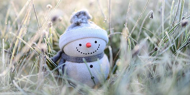 Снешко Белић у трави