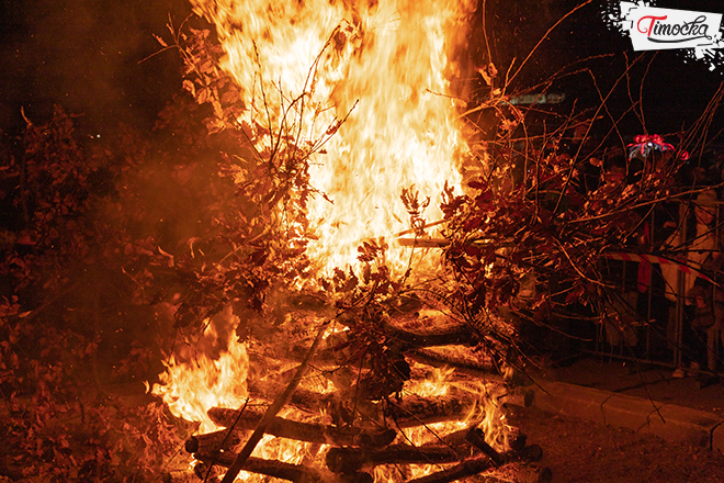 Badnje veče u Zaječaru — Nalaganje badnjaka