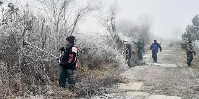 Krčenje puta Trnavac–Gradskovo