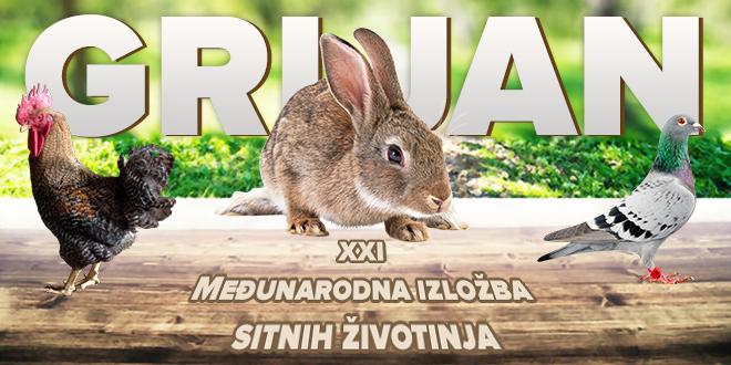 XXI Međunarodna izložba sitnih životinja u Grljanu