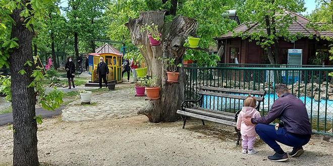 Borski Zoološki vrt ponovo otvoren za posetioce uz poštovanje propisanih mera zaštite