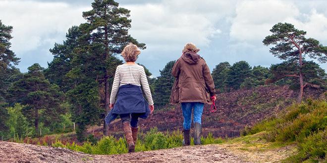 Žene šetaju u prirodi
