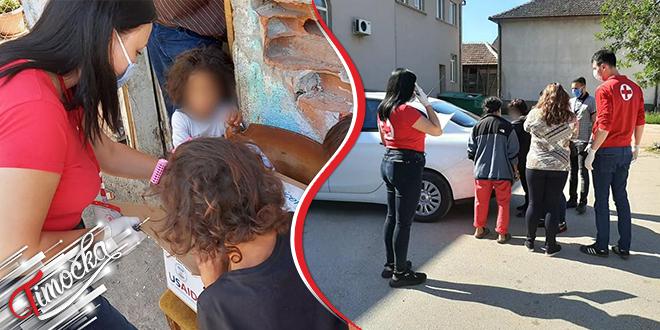 Crveni krst Zaječar: Isporuka porodičnih paketa socijalno ugroženim porodicama
