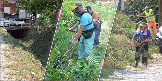 Zaječar: Uređenje gradskih jaruga i krčenje rastinja
