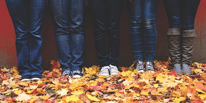 Jesen, opalo lišće