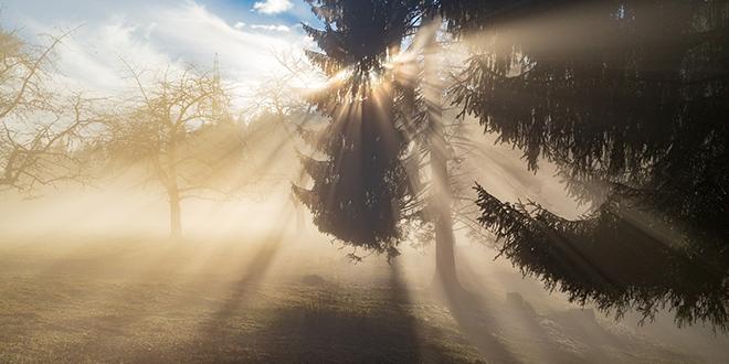 Сунце, магла