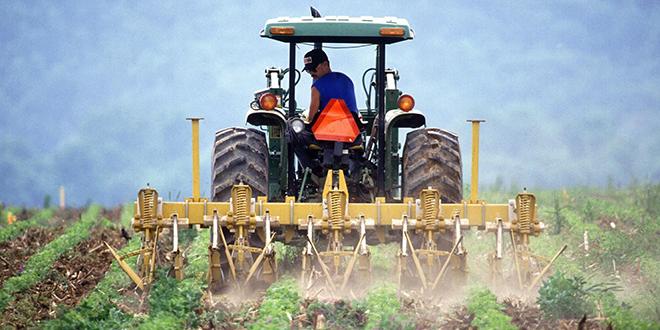 Agrikultura, poljoprivreda, farmer obrađuje zemlju